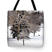 On A Stroll Tote Bag