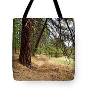 On A Trail From The Past To The Future Tote Bag