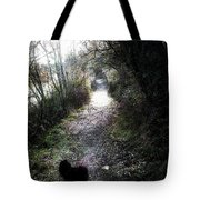 On A Walk In The Park Tote Bag
