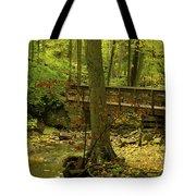 On An Autumn Walk Tote Bag