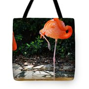 On Stilts Tote Bag