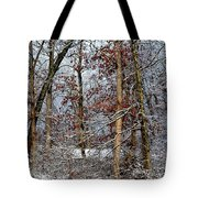 On Such A Winter's Day Tote Bag