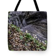 On The Banks Of The Rapids Tote Bag