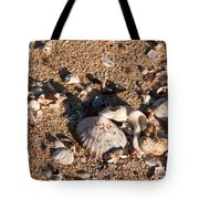 On The Beach 03 Tote Bag
