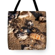 On The Beach 04 Tote Bag