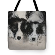 On The Border Tote Bag