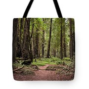 On The Enchanted Path Tote Bag