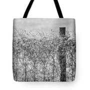 On The Fence Bw Tote Bag