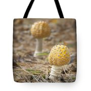 On The Forest Floor Tote Bag