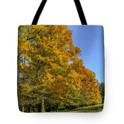 On The Grounds Of Biltmore Tote Bag