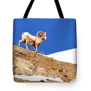 On The Mountain Tote Bag