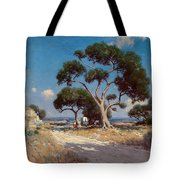 On The Old Blanco Road Southwest Texas Tote Bag