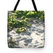 On The Oregon Dunes Tote Bag