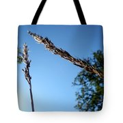 On The Prairie #10 Tote Bag