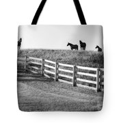 On The Ridge Tote Bag