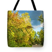 On The Road To Autumn Tote Bag