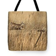On The Run 2 Tote Bag by Thomas Young