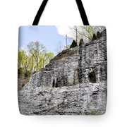 On The Side Of The Mountain Tote Bag
