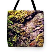 On The Side Of The Rock Tote Bag