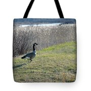 On The Strut Tote Bag