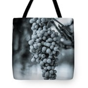 On The Vine  Bw Tote Bag