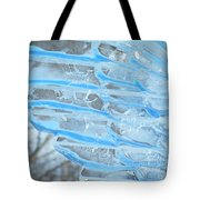 On The Wings Of A Winter Wind Tote Bag