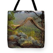 On Top Of Flatside Pinnacle Tote Bag