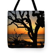 Once A Mighty Oak Tote Bag