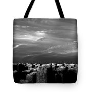 Once There Was A Place Tote Bag