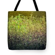 Once Upon An Egret's Home Tote Bag