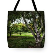 One Autumn Day - Central Park - Nyc Tote Bag