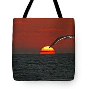 One Black Skimmers At Sunset Tote Bag