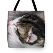 One Day Old Kitten Breastfeeding Tote Bag