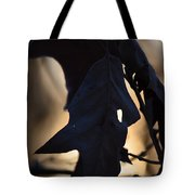One December Morning Tote Bag