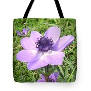 One Delicate Pale Lilac Anemone Coronaria Wild Flower Tote Bag