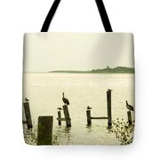 Seadrift Texas Only One Empty Seat Tote Bag