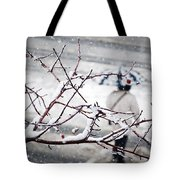 One Morning In Montreal Tote Bag