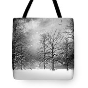 One Night In November Tote Bag by Bob Orsillo