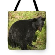 One Of The Quads Tote Bag
