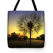 One Of Those Magical Mornings Tote Bag