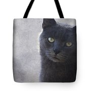 One Of Those Mysterious Blue Days Tote Bag