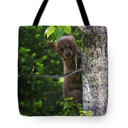 One Of Three Tote Bag