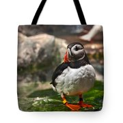One Puffin Bird Art Prints Tote Bag