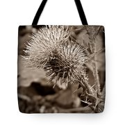 One Sepia Tote Bag