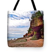 One Side Of Flowerpots At Hopewell Rocks-new Brunswick  Tote Bag