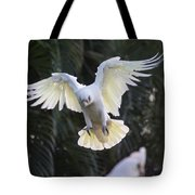 One Small Step For Bird Kind Tote Bag
