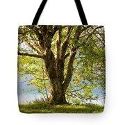 One Spring Tree Tote Bag