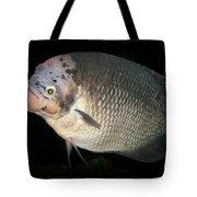 One Strange Fish Tote Bag