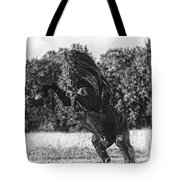 One Trick Pony Tote Bag
