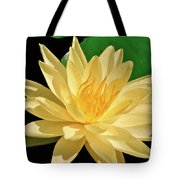 One Water Lily  Tote Bag